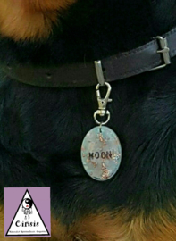 Orgonite hanger (eigen keuze) met naam (huis)dier