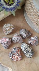 Luipaard Jaspis 10-20 gram