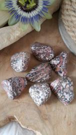 Luipaard Jaspis 21-40 gram