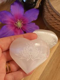 Seleniet hart Lotus