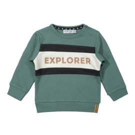 Dirkje - Sweater Sage