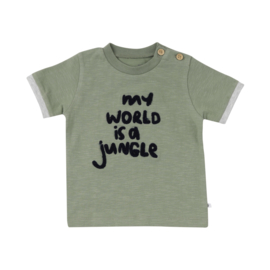 Ducky Beau - T-Shirt Hedge Green