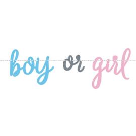 Versieringen - Boy or Girl Banner