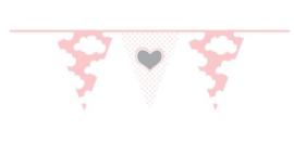 Versieringen - Vlaggenlijn babygirl