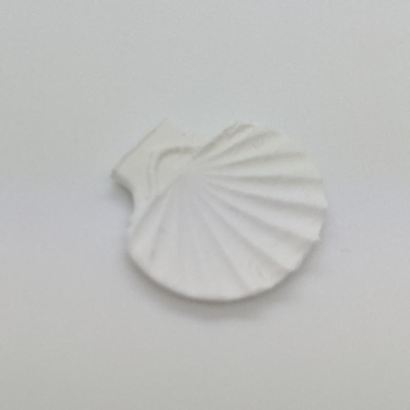 Shell platter