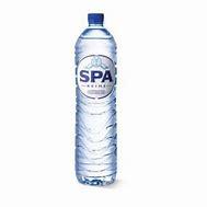 Spa Reine 1,5 liter