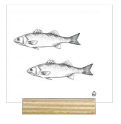House Vitamin Funky Ceramics 'Fish'