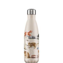 Chilly's Bottle Emma Bridgewater Cats 500ml