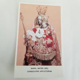 Bidplaatje Maria, Mater Jesu