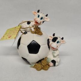 Koeien op voetbal spaarpot