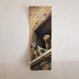 Boekenlegger honden uit Belgie