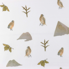 Snoozy fabrics Poplin Desert bird