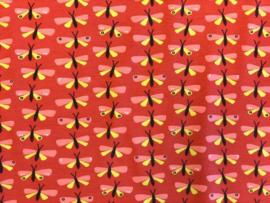 Tricot Papillon