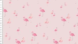 Tricot Flamingos