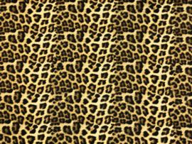 Stenzo poplin leopard print