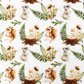Snoozy fabrics Poplin digital Eekhoorntje