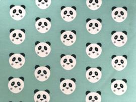 Tricot Panda