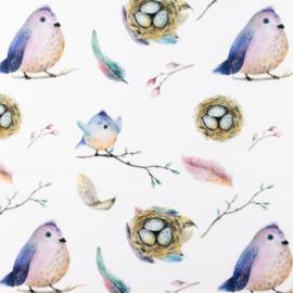 Snoozy fabrics Poplin digital Betty birds