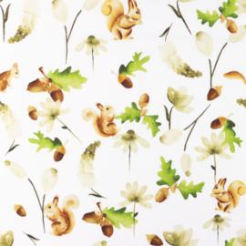 Snoozy fabrics Poplin Dale