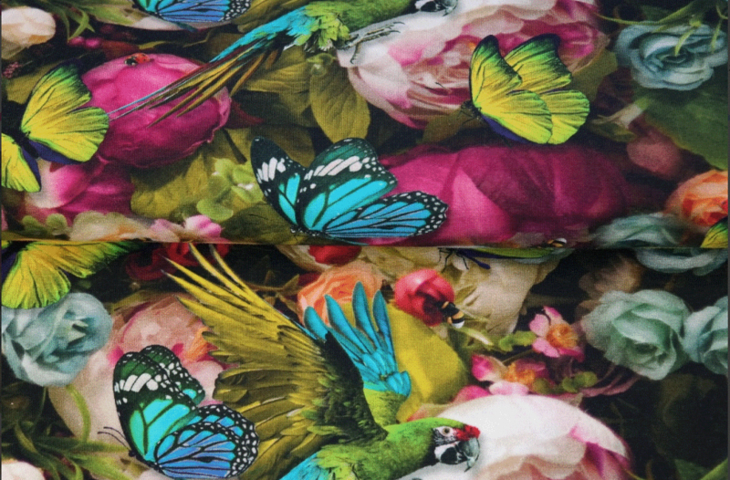 Stenzo tricot Exotic butterflies