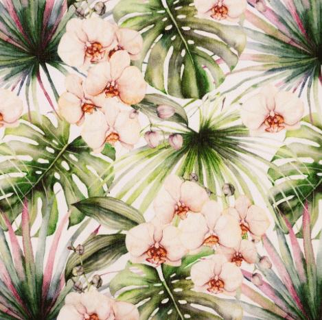 Poplin Orchidee