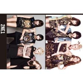 Koreaanse Korean Kpop Band 2NE1 Posters 2ne1