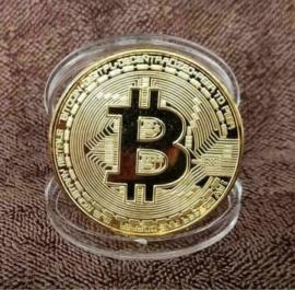 Bitcoin BTC Muntje Munt Munten Muntjes satoshi collectie