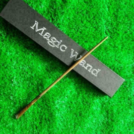 Harry Potter Magic Wand Toverstok cosplay
