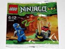 30085 Snake Battle (Polybag)
