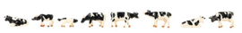 155903 Koeien, zwartbont