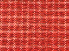 50504 Baksteen rood