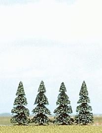 6100 4x denneboom 55mm