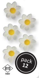 Large White Blossoms (24/Pk)