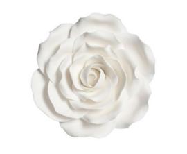 Suikerbloem Roos Wit 10cm