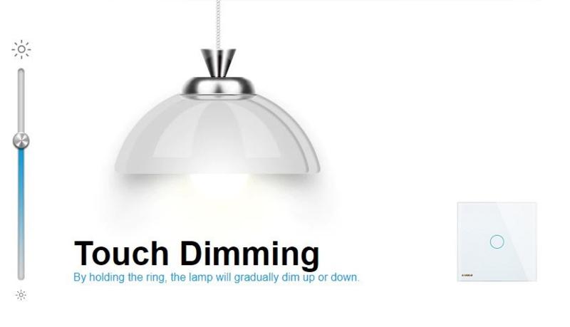 Livolo | Module | Single | 1  Way | Dimmer