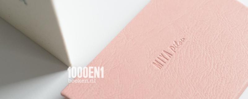 Accordion album leather look