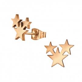 Kinderoorbellen chirurgisch staal stars rose gold plated