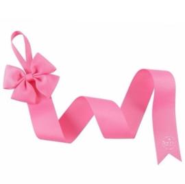 Haarspeldjes bewaarlint roze
