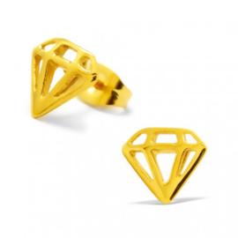 Kinderoorbellen chirurgisch staal diamant gold plated
