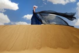 Hans Withoos- Sahara Wind