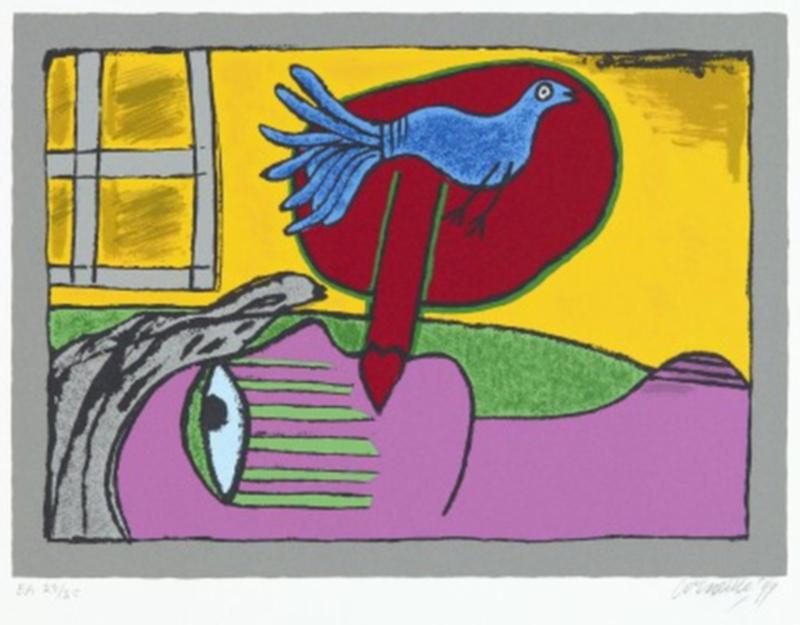 Corneille - Regard sur l'oiseau