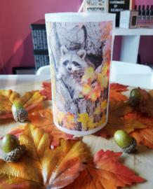 Herfst kaars Wasbeertje