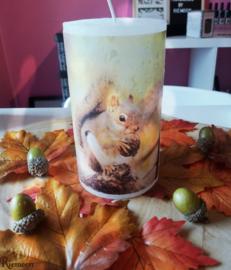 Herfst kaars Eekhoorn