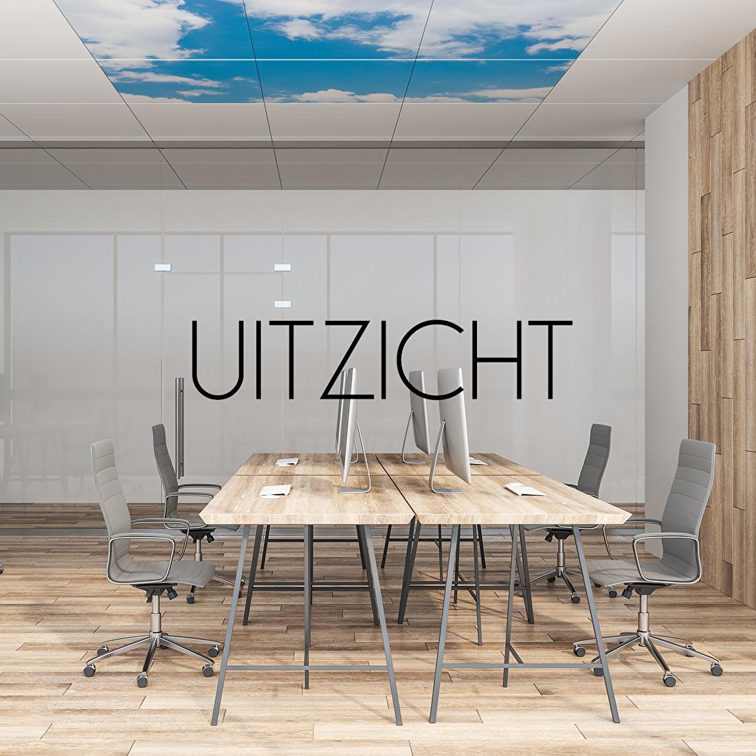 plafondplaat print uitzicht wolken systeemplafond