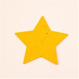 10 x groeivorm ster | veldbloemen