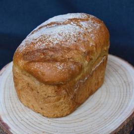 Andes Brood