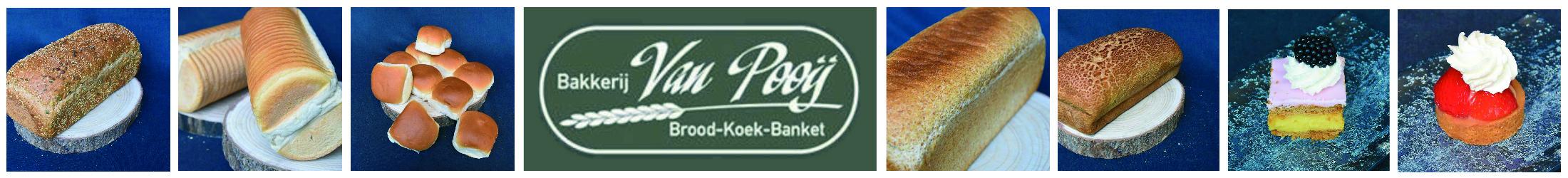 Ab van Pooij