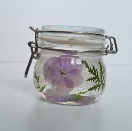 Gelkaars Hortensia lila