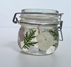 Gelkaars Hortensia lila / wit