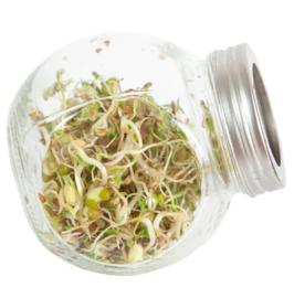 Spruitgroente pot Salademix